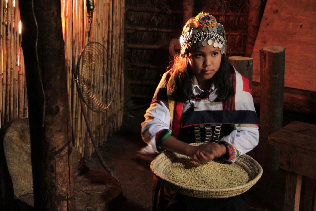 Exhibida en la Muestra de Cine Indigena del Wallmapu: TUWUN