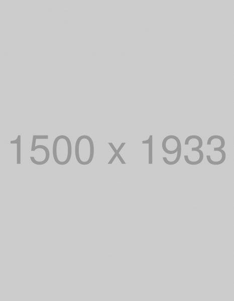 rawpixel-661940-unsplash